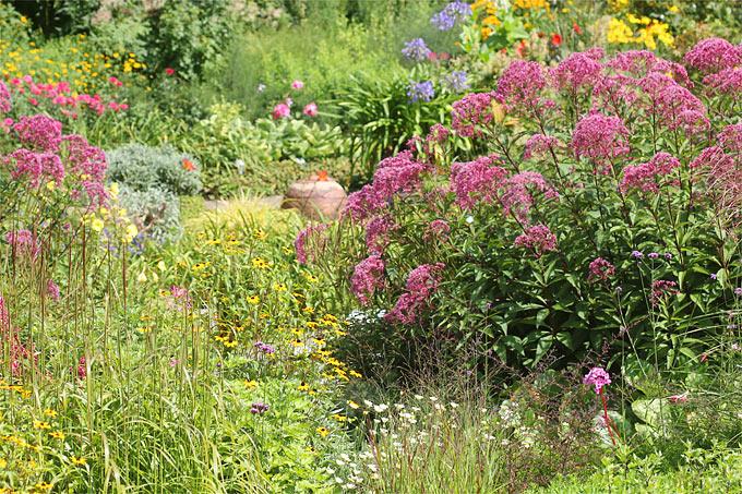 Elegant Naturnaher Garten