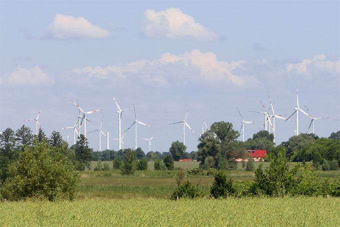 Windpark im Havelland - Foto: Helge May